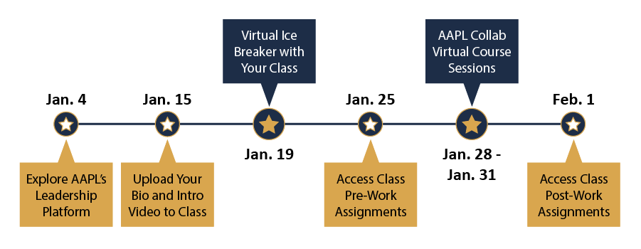 Collab Course timeline