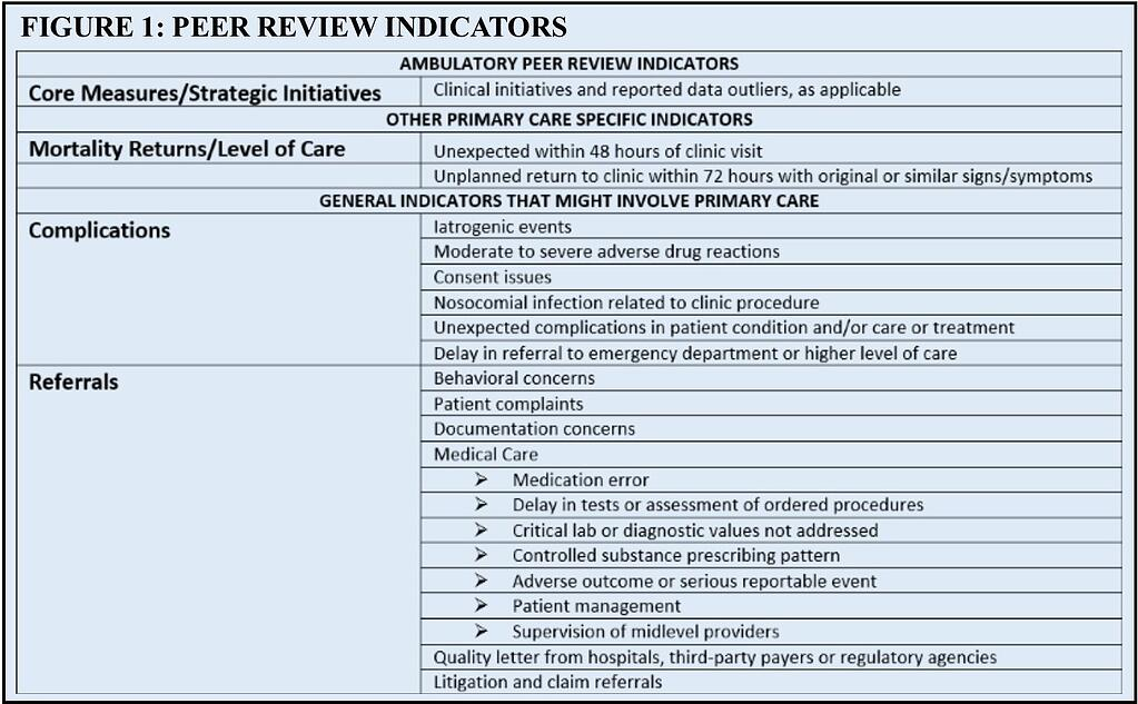 snyder figure 1 peer review indicators.jpg