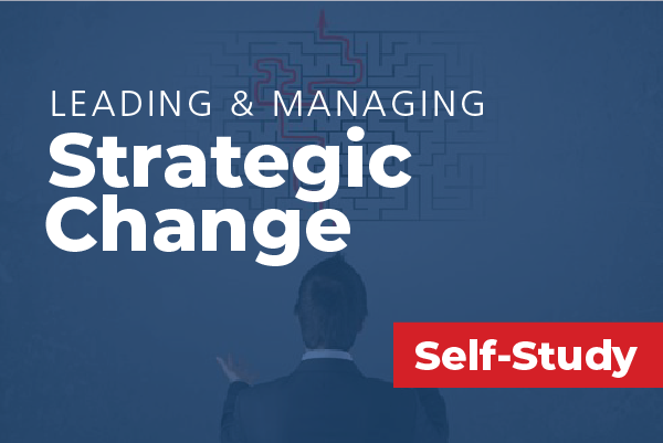 Leading and Managing Strategic Change